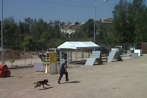 K9 training unit, Tijuana