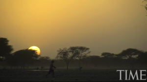 Africa starts to plant wall of trees across the Sahel to stop spread of Sahara desert